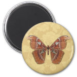 Pretty Brown Butterfly on Vintage Beige Floral Refrigerator Magnets
