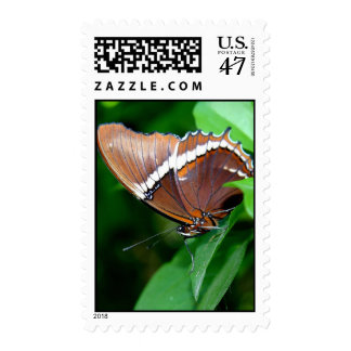 Pretty Butterfly, Costa Rica Postage