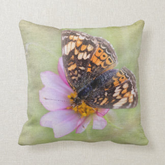 Pretty Butterfly on a Pink Flower Pillow