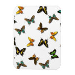 Pretty Butterfly Pattern Rectangle Magnets