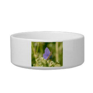 Pretty Butterfly Pet Bowl