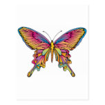 pretty butterfly postcards