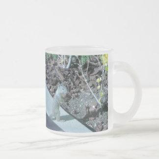 Pretty California Ground Squirrel Frosted Glass Coffee Mug