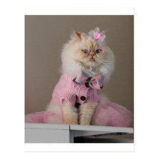 Pretty  cat  in Pink Sweater Postcard