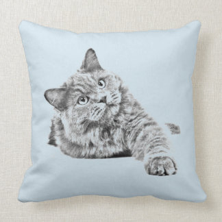 Pretty cat on a soft blue cushion