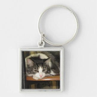 Pretty Cat on Chair Keychain