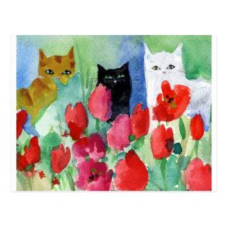 Pretty Cats Postcard