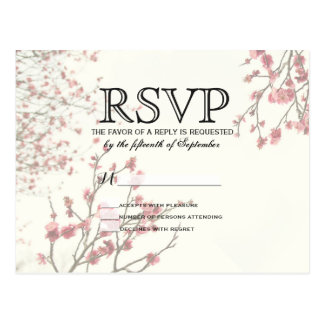 Pretty Cherry Blossom Trees on Elegant White Postcard