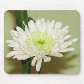 Pretty Chrysanthemum Mouse Pad