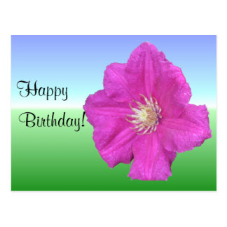 Pretty Clematis Flower Greeting Card Postcard