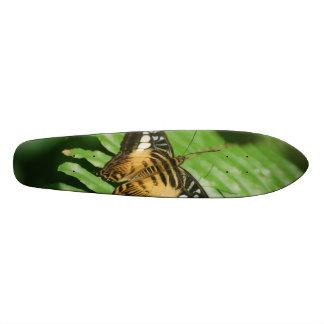 Pretty Clipper Butterfly Skate Boards