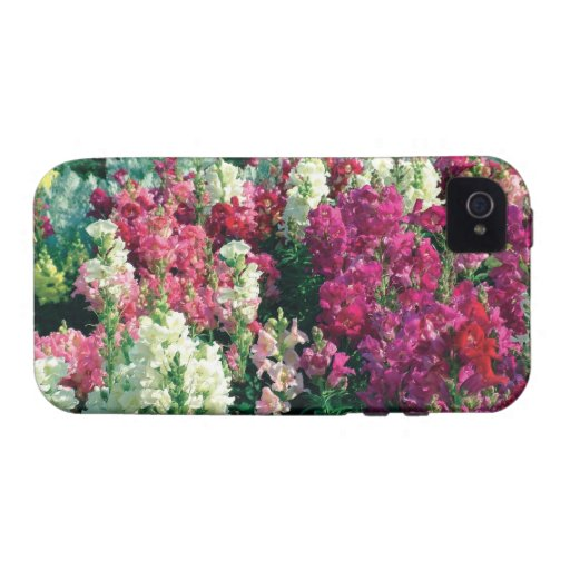 pretty colorful garden flowers iPhone 4/4S case