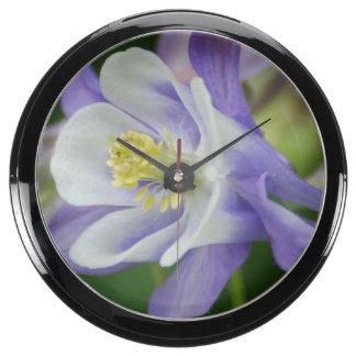 Pretty Columbine Flower Aqua Clocks