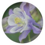 Pretty Columbine Flower Melamine Plate