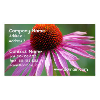Pretty Coneflower Double-Sided Standard Business Cards (Pack Of 100)
