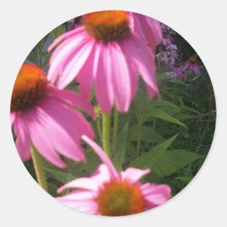 pretty coneflowers classic round sticker