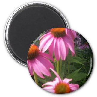 pretty coneflowers magnet