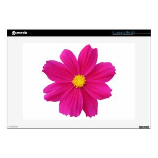 pretty cosmos flower laptop decal