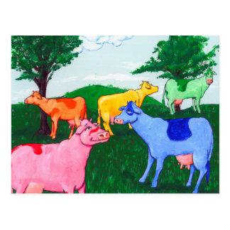 Pretty Cows Postcard
