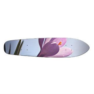 Pretty Crocus Skate Board