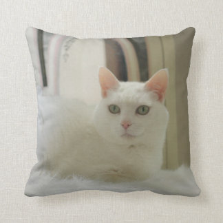 Pretty, Cute, White Cat American MoJo Pillow
