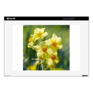 "Pretty Daffodils, Narcissus 03.1 15"" Laptop Skins"