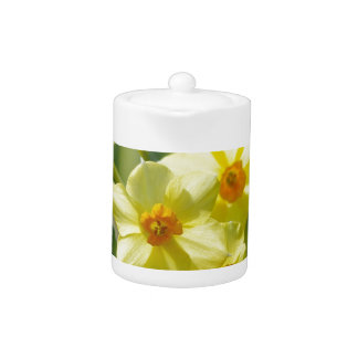 Pretty Daffodils, Narcissus 03.1 Teapot