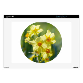 """Pretty Daffodils, Narcissus 03.2_rd Skin For 15"""" Laptop"""