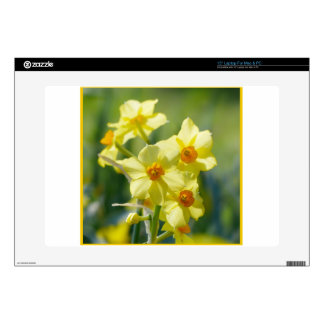 """Pretty Daffodils, Narcissus 03.3 Skin For 15"""" Laptop"""