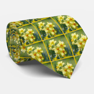Pretty Daffodils, Narcissus 03.6.2 Neck Tie