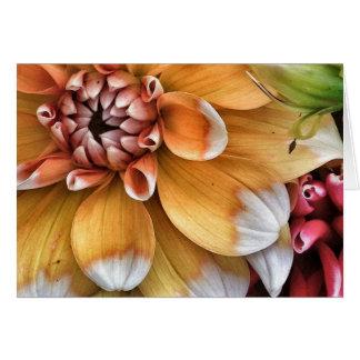 Pretty Dahlia Blooms Card