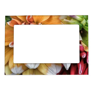 Pretty Dahlia Blooms Magnetic Photo Frame