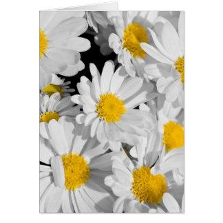 Pretty Daisies Card