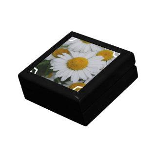 Pretty Daisies Gift Box