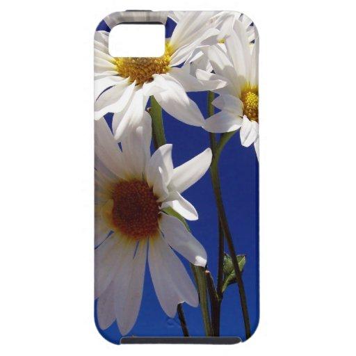Pretty Daisies iPhone 5 Case