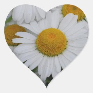 Pretty Daisies Heart Sticker