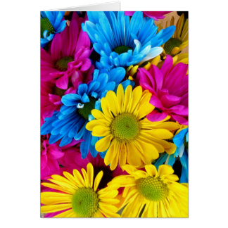 Pretty Daisy Flowers Colorful Petals Gifts Greeting Card