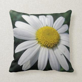 Pretty daisy throw pillow