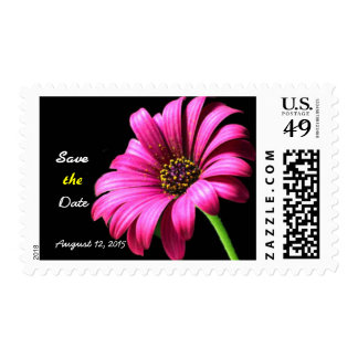 Pretty Daisy Wedding Save the Date Postage Stamp