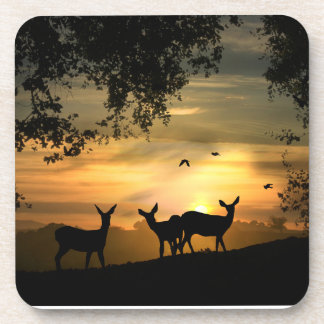 Pretty Deer in the Sunset Coasters
