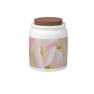 Pretty Delicate Feminine Flower White Pink Gifts Candy Jar
