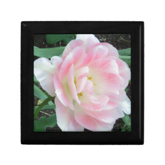 Pretty Delicate Feminine Flower White Pink Gifts Jewelry Box