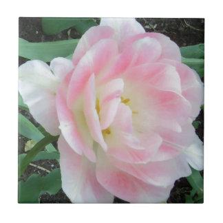 Pretty Delicate Feminine Flower White Pink Gifts Tiles