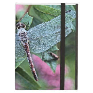 Pretty dragonfly ipad folio case