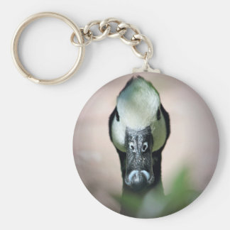 Pretty Duck With White Face and Black Beak Basic Round Button Keychain
