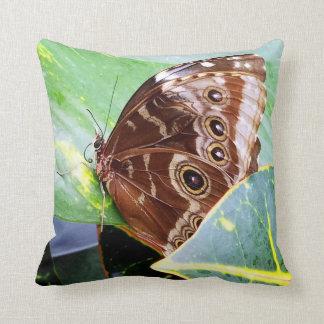 pretty eye butterfly moth brown tan bug nature throw pillow