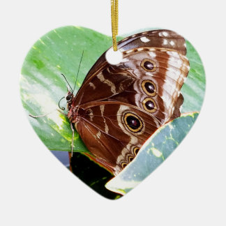 pretty eye butterfly moth brown tan picture bug ceramic ornament