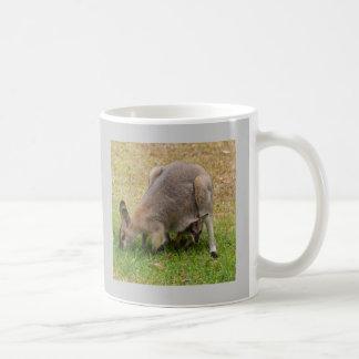 Pretty Faced Wallaby Mug