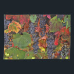 """Pretty Fall Vineyard Wine Kitchen Towel<br><div class=""""desc"""">A beautiful addition to the kitchen,  this is a beautiful harvest vineyard towel.  A pretty accent for the wine or tuscan themed kitchen.</div>"""