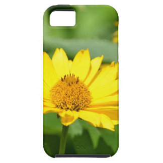 Pretty False Sunflower iPhone 5 Cases